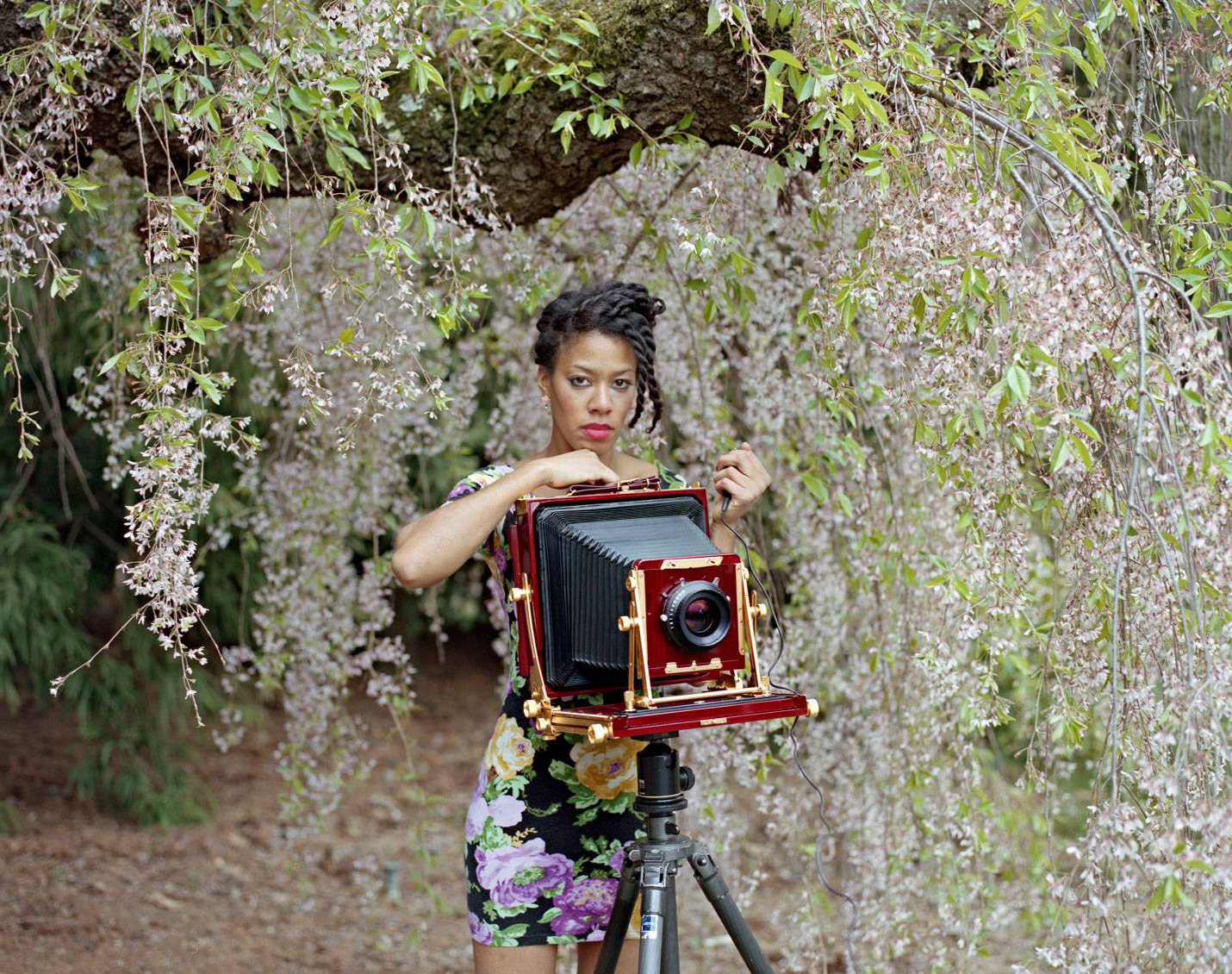 迪纳·劳森 behind a square-format camera amongst cherry blossoms